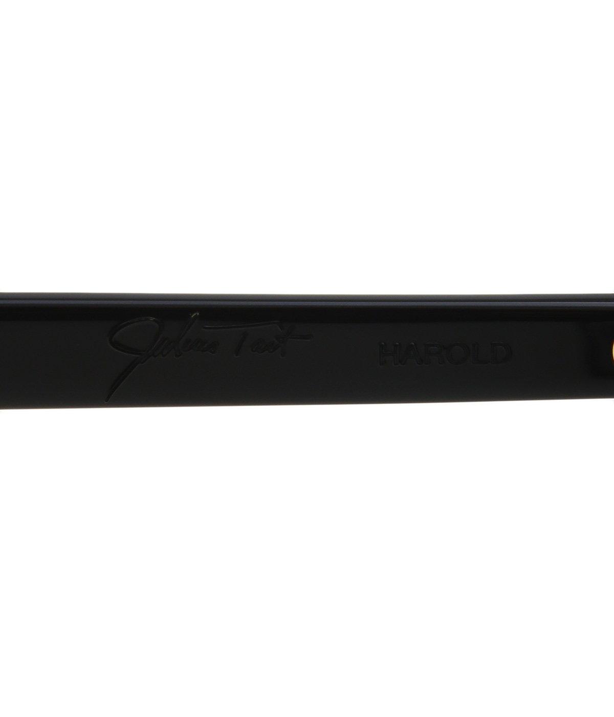 HAROLD 45-23 - SUN -BLACK / GR-56-