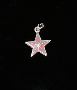 【ONLY ARK】別注 COLOR STAR